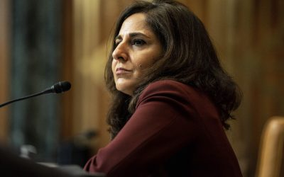 What No One Wants to Confront About the Neera Tanden Nomination Noise