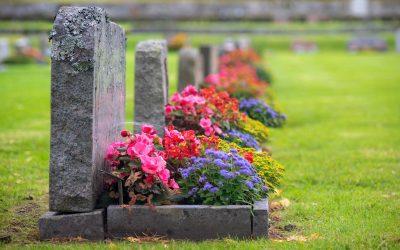 American Covid Deaths — A Dark Milestone