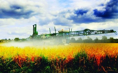 Reality Check: Many Food Crops Are Sprayed with Glyphosate Weed Killer Before Harvest